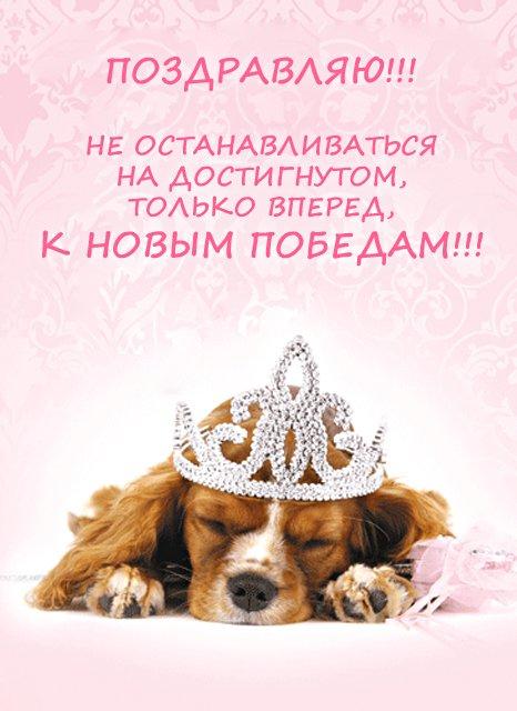 Поздравление щенятами